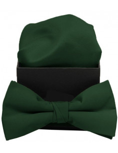 Hugo Plain Bowtie Green